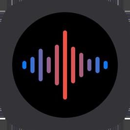 Voice Recorder Pro-Recording