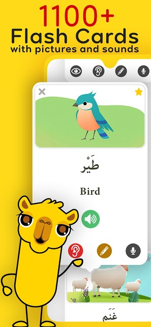 Arabic Unlocked: Learn Arabic and Quran